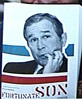 bush (12k image)