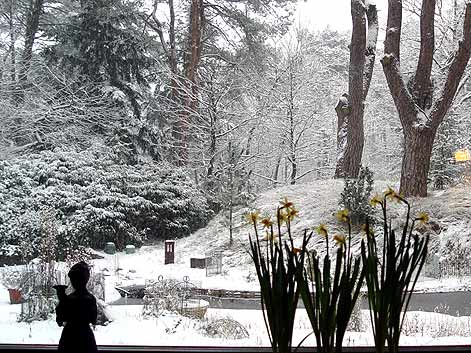 sneeuwmaart.jpg