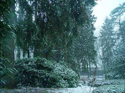winterdag.jpg