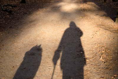 wandeling.jpg